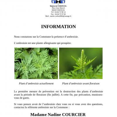 Information Ambroisie